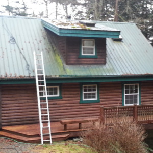 Steep Metal Roof Cleaning & Deck Cleaning at Guemes Island