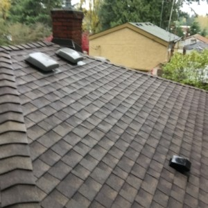 Roof Cleaning in Everett, WA