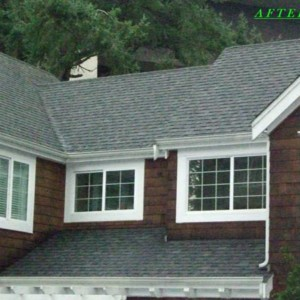 Professional Moss Removal From Roof