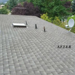 Expert Roof Cleaning