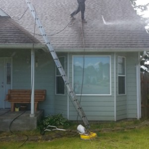 Birch Bay Roof Cleaning & Moss Removal