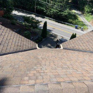 Roof Cleaning in Kenmore, Washington – August 2019