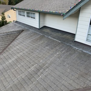 Softwash Roof Cleaning in Everett Washington – March 2021